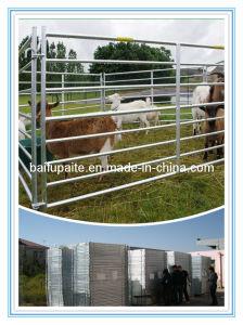 Livestock Product Sheep Hurdles