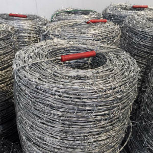 Galvanized Babrbed Wire, Fence Babred Wire pictures & photos