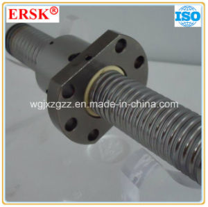 High Precision Domestic Ball Screw with Nut and Support pictures & photos