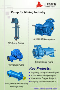 Asp5030/5040 API610 Standard End Suction Pump for Chemical Processing pictures & photos