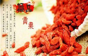 Super Fruit Goji Berry pictures & photos