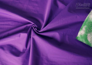 100% Nylon DTY Rib/Stop Fabric with TPU Lamination (NT-270CTL) pictures & photos