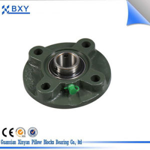Factory Supply High Quality Pillow Block Bearing Bxy206 with Eccentric Sleeve Outer Spherical Bearing pictures & photos