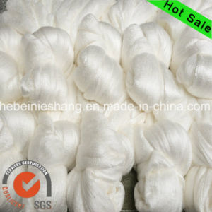 20 22D Raw Spun 100% Mulberry Raw Silk Yarn pictures & photos
