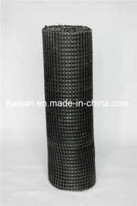 Pet 200-200 Width 1-6m High Quality Warp Knitted Polyester Geogrid with Ce Certification pictures & photos