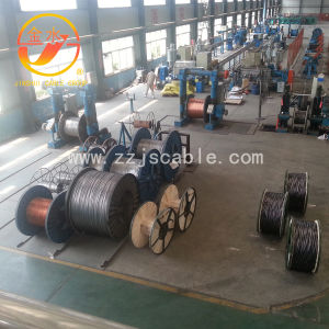 Galvanized Steel Wire, Guy Wire, Stay Wire pictures & photos