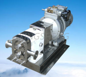 Chemical Grade Rotor Pump with Tri-Lobe Rotor (CE approved)