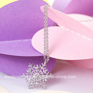 Fashion Jewelry -Frozen Fashion Jewelry Necklace pictures & photos