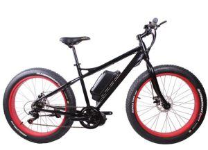 Electric Fat Bike Mountain E Bike