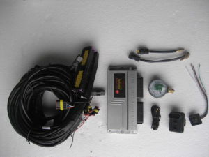 Petrol Enghine Use to Conversion Kit with CNG Compressor pictures & photos