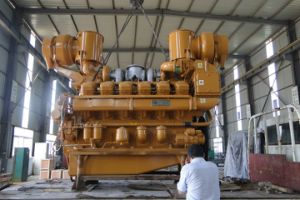 10kw-1000kw Sulphure Remover Biogas Power Plant pictures & photos