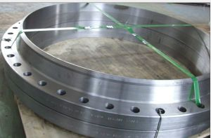 SA350 Lf2, A105 Forged Flanges / Custom Flanges / Large Size Flanges pictures & photos