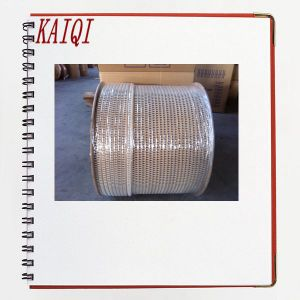 Galvanized Double Loop Tie Wires for Book Binding pictures & photos