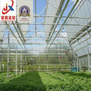 Roof Full Opening Green House pictures & photos