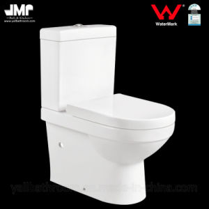 Watermark Sanitary Wares Washdown Bathroom Wc Ceramic Toilet pictures & photos