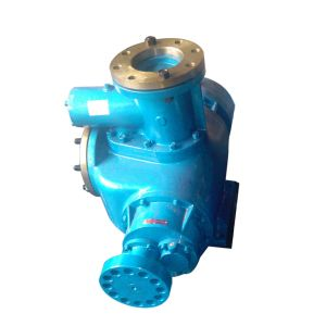 China Huanggong Machinery Group Twin Screw Oil Pump 2hm800-30 pictures & photos