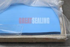 Teflon / PTFE Gasket for Flange Sealing (G-350G) pictures & photos