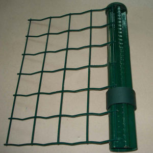 PVC Coated Euro Wire Mesh Fence/ Holland Fence (EDWM-01) pictures & photos