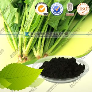 100% Natural High Quality Sodium Copper Chlorophyll pictures & photos