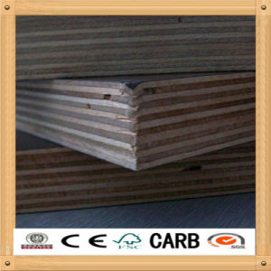 Phenolic WBP Birch Core Film Faced Plywood pictures & photos
