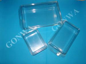 Pet Big Capacity Plastic Blister Packaging