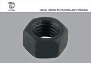 2016 Black Hex Nuts with High Quality Hot Sale pictures & photos