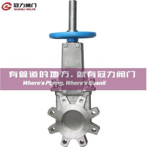 Stainless Steel Lug Type Knife Gate Valve pictures & photos