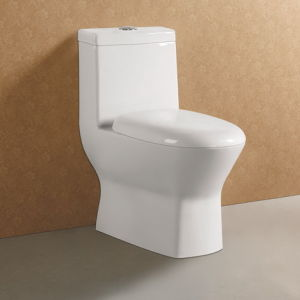 Double Flush Siphonic One Piece Toilet