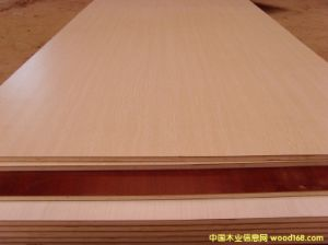Fancy Plywood pictures & photos