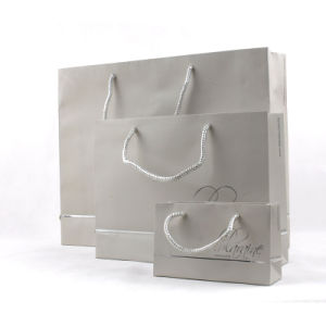 Eco Paper Shopping Bag (PG-00003)