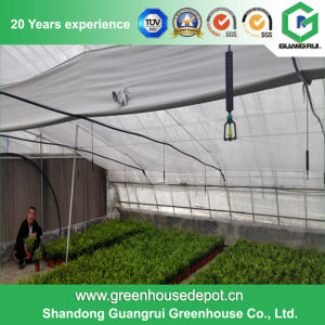 China Multi-Span Flower/ Vegetable Plastic Film Greenhouse pictures & photos