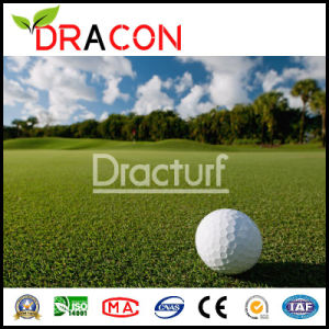 Mini Golf Putting Green Artificial Lawn (G-1551) pictures & photos