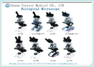 Yj-101b Microscope for Laboratory Use /Stereo Microscope /Zoom Stereo Microscope pictures & photos