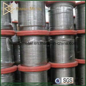7X7 Stainless Steel Wire Rope pictures & photos