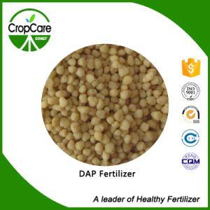 Fertilizer Grade DAP Diammonium Phosphate pictures & photos