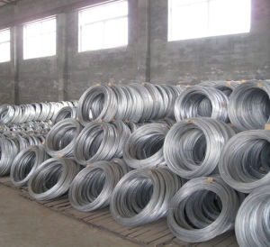 ASTM B498 Standard Galvanized Zinc Coated Steel Wire pictures & photos