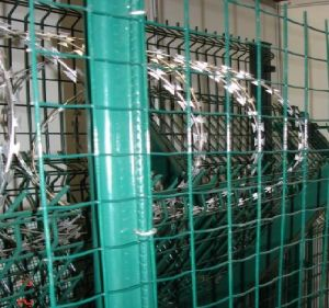 PVC Welded Mesh pictures & photos
