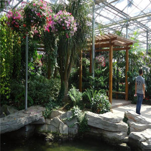 Top-Standard-Quality Commercial Blackout Greenhouse for Sale pictures & photos