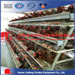 Automatic Chicken Cage Nipple Drinker Poultry Equipment/Cheap Gavilized Welded Wire High Quality pictures & photos
