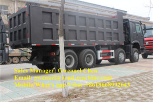 Sinotruk 12 Wheels HOWO 8X4 Dump Truck/ Tipper/ Dumper, Diesel/LNG/CNG pictures & photos
