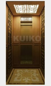 Home Lift Kjx-BS202 Villa Elevator Mirror Sts pictures & photos