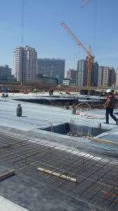 Roofing APP Modified Waterproofing Membrane pictures & photos
