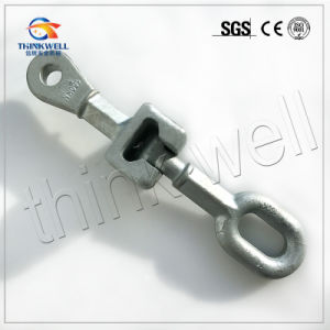 Forged Steel Hot DIP Galvanized Socket Eye pictures & photos