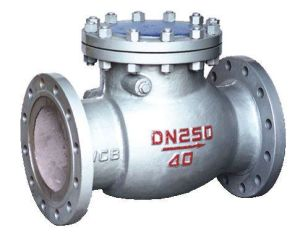 High Pressure ANSI Check Valve pictures & photos