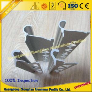 China Name Brand Aluminum Profile for Furniture Profile pictures & photos