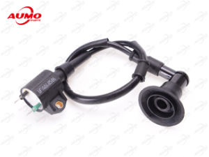 Ignition Coil for 253fmm 250cc Motorcycle Engine Parts pictures & photos
