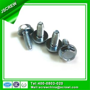 Ss314 Stainless Steel Galvanized Hex Head Bolt M4 pictures & photos