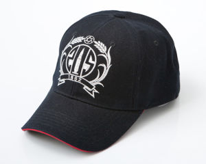 A10 Embroidered Baseball Cap pictures & photos