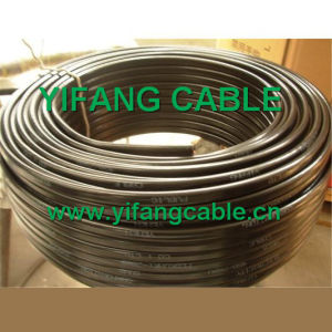 Electric Wire with Black Colour, White Colour pictures & photos