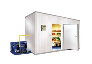 Potato Custom-Built Cold Storage Freezing Rooms (LLC) pictures & photos